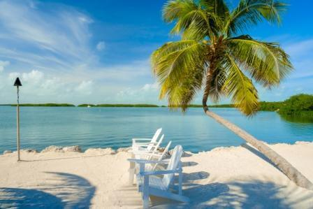 Florida Key beach with a few loung chairs and palm