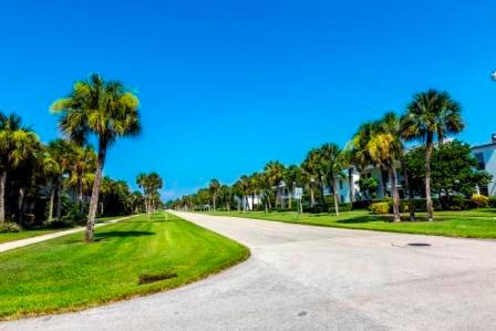 Naples area with palms and some property