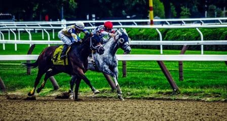 saragota springs races