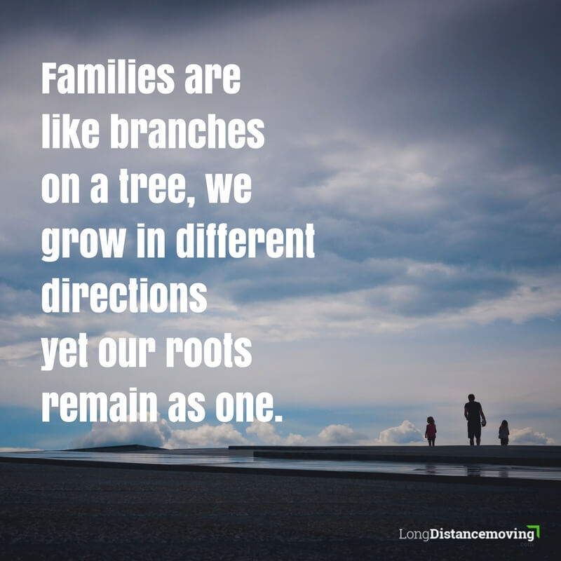Families are like branches on a tree
